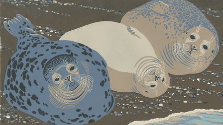 Temple, Bishop and Bean, seals at Blakeney Point, by Robert Gillmor