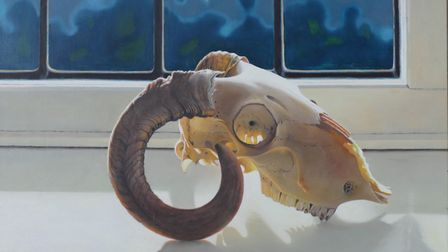 A horned sheep's skull - George Melling