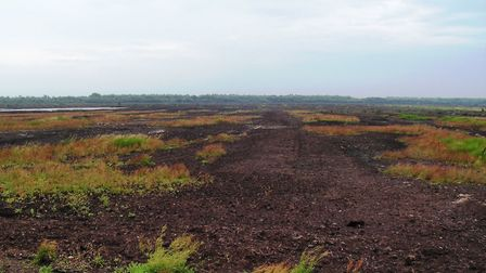 Peat extraction has ravaged Little Woolden Moss (Picture: Alan Wright)