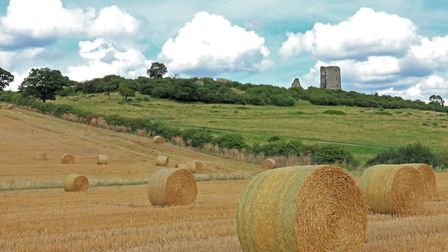 Hadleigh Country Park Farmland and Castle (c) Marc J Pether-Longman, Flickr (CC BY 2.0)