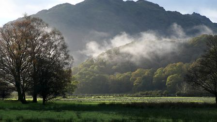 A moody mist lingers over Johnny Wood in Borrowdale
