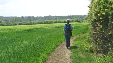 The return path to Stoke by Clare