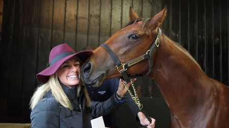 Syndicate members can see their horse on open days