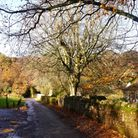 The pretty village has twisting lanes lined with stone walls (c) Mike Richardson