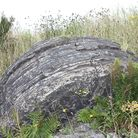 The unusual rabbit rocks were shaped at the bottom of kilns
