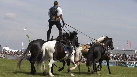 The Atkinson Action Horses. Photo credit: Peter Dean