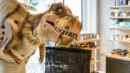 Daphne the Dinosaur will be paying a visit to Clarks Village (c) Antony Potts