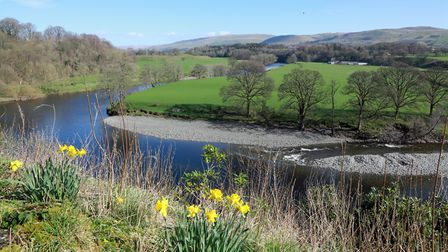 Ruskin's View over the River Lune