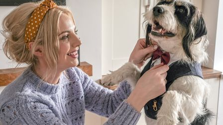 Putting the final touches to Archie's wedding suit is Jenny Tunnah with her four- year-old rescue d
