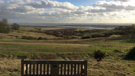 Credi:t Chelmsford City Council - listening bench at Hadleigh Park