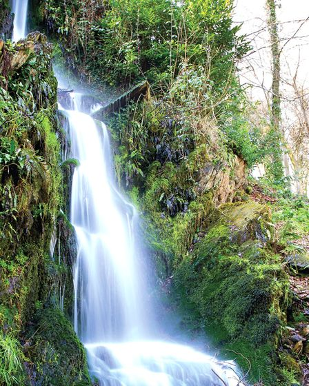 Hestercombe has some lovely sights tucked away like this waterfall