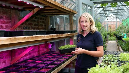 Catherine by the growlights over micro-plants