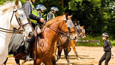 Police horses move in to quell the riot
