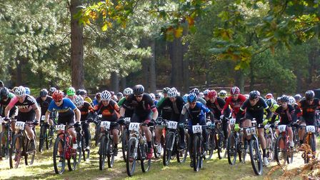 Recreational users, like these mountain bike racers, flock to Thetford Forest (photo: Fergus Muir)