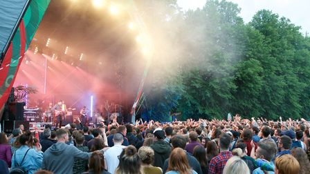 The forest has become a popular summer live music venue (photo: Steve Hunt)