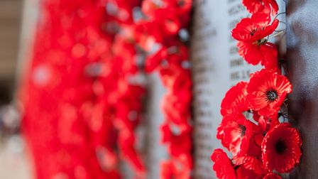 Poppies on a War Memorial for Remembrance