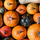An assortment of pumpkins of different shapes, colours, and sizes