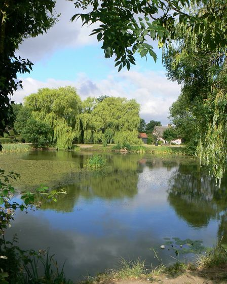 The village pond at WickhamSkeith, known locally as 'The Grimmer', where Matthew Hopkins swam witche