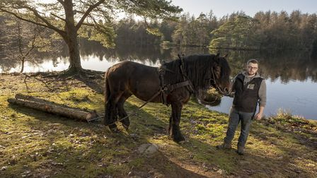 26 year old David Lenihan and Bolero, a 15.2 hands North Swedish horse from The Celtic Logging Compa