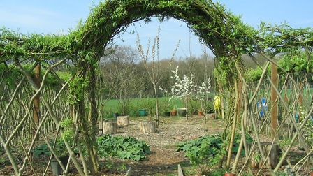 The willow entrance to an allotment in Horwich
