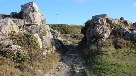 The shared tramway route towards the end of the walk