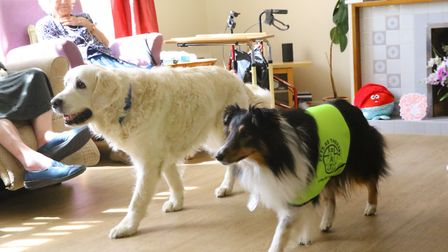 Abbee and Gem putting on an obedience demonstration (photo: Serena Shores)