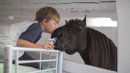 Bailey Alexander with one of the horses
