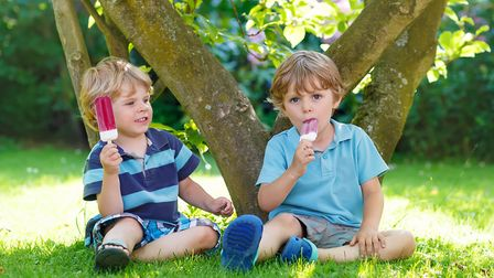Two adorable little sibling kids eating ice cream pops in home's garden, outdoors. Happy blond boys