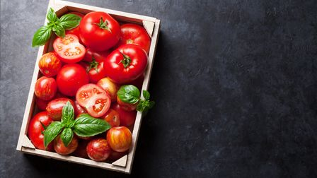 Fresh tomatoes and basil leaves are the main ingredient to this dish