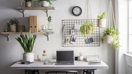 Adding some planting and greenery to your space will improve wellbeing. Check out more ideas from ww