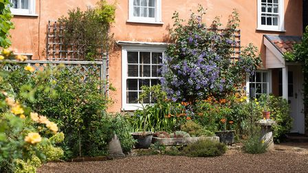 Blue clematis, orange alstromeria and yellow evening primrose at the front of the Summer House, Chel