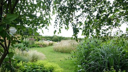The view through an arch to the ghost border on the left that was inspired by the wildflower meadow