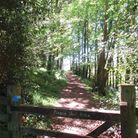 One of the many miles of Somerset footpaths, traversed for Somerset Life