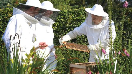 Ron Harper tending the bees with son, Joe and Andy Sugden.