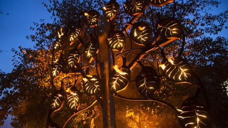 The Fire Garden created by Walk the Plank will be in Bournemouth Lower Gardens Photo Vipul Sangoi