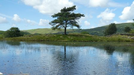 Kelly Tarn by Emily Rothery