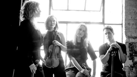 Albion Quartet will perform at the Two Moors Festival
