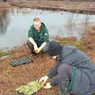 Trainees at workon the mosslands for the Carbon Landscape Partnership