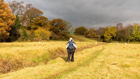 Walking towards the M6 at Scorton