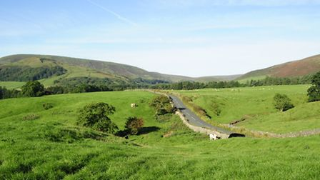 Tourism businesses in the Forest of Bowland are working together to boost tourism