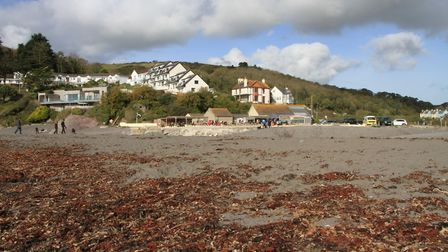 Regular beach cleans take place at Seaton