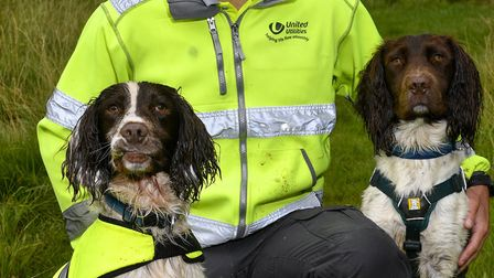 Specialist dog handler Luke Jones who along with his specially trained Springer Spaniel search dogs,
