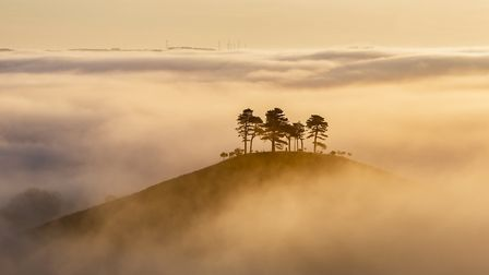 Misty sunrise, Colmers Hill by Mark Whitmarsh/Landscape Photographer of the Year 13/AA Publishing