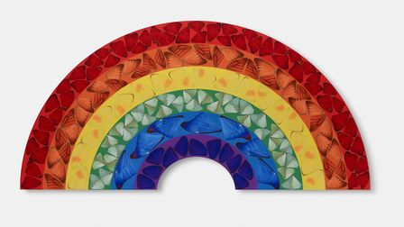 The piece by Damien Hirst is called Butterfly Rainbow and is made up of images of coloured butterfly