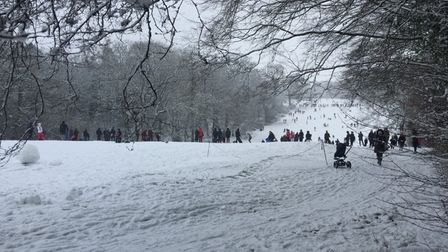 People in St Albans flocked to Batchwood Golf Course for snow-based activities.
