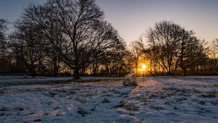 Monday's snowy sunrise on Orchard Hill, by St Albans Cathedral