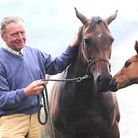 Image of vet Brian Crawford with a mare and foal
