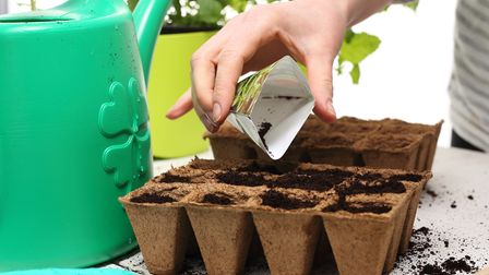 Undated generic photo of someone sowing seeds. See PA Feature GARDENING Advice Seeds. Picture credit