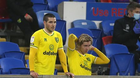 "Emiliano Buendia of Norwich and Todd Cantwell of Norwich watch from the ""bench"" after being subbed d"