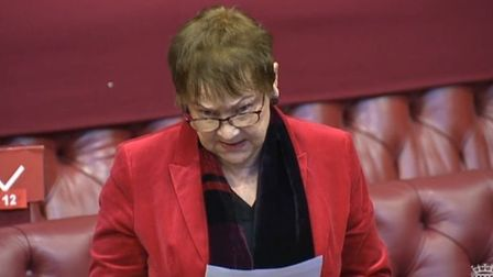 Liberal Democrat Baroness Ludford speaking in House of Lords